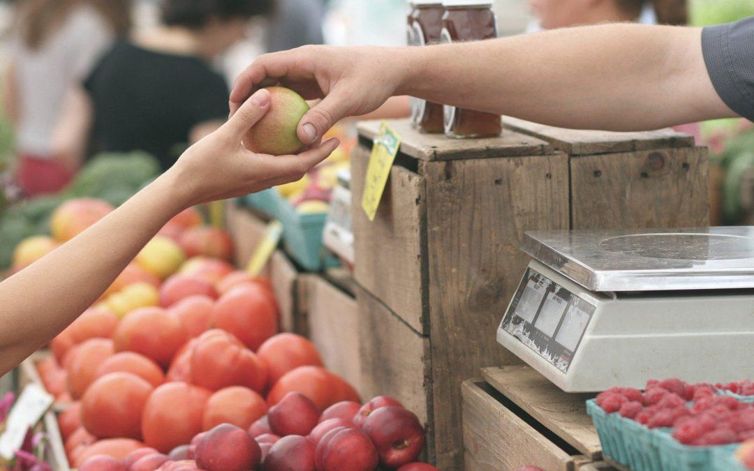 Food Policy di Roma, CURSA: «Decisione importante e a lungo attesa. Realizzare al più presto politica del cibo per rispondere a problemi attuali della Capitale»