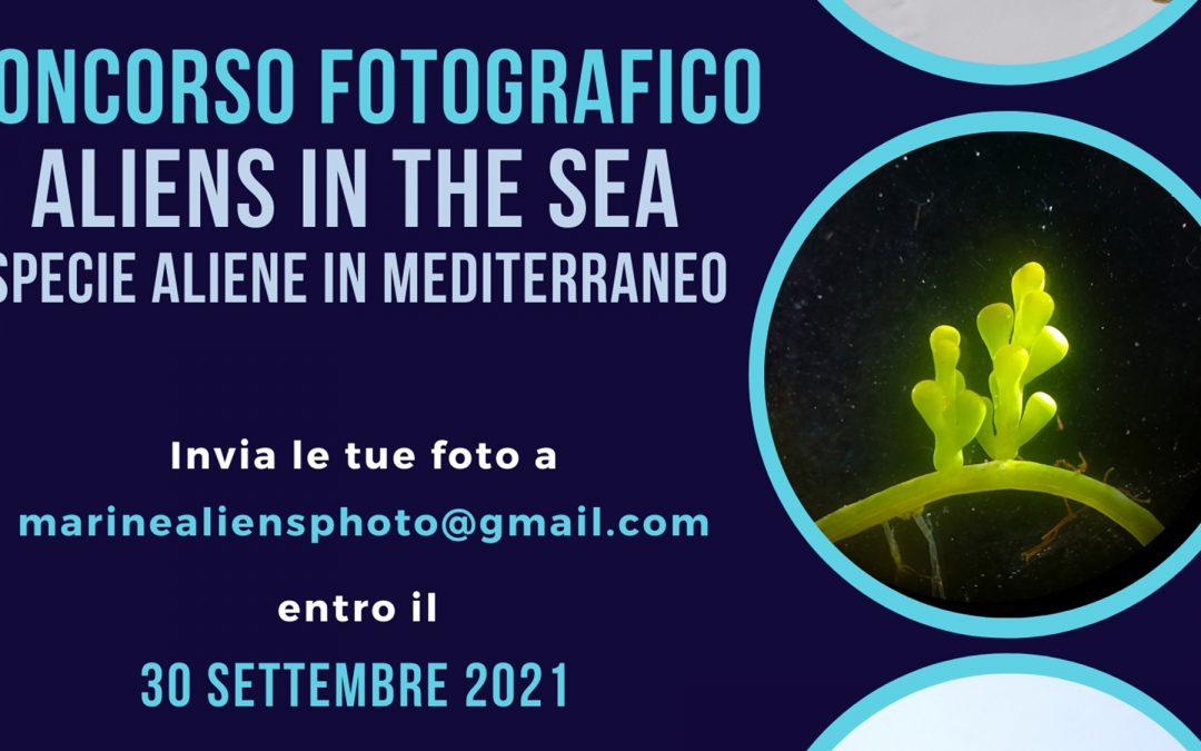 """Progetto """"Aliens in the Sea"""": al via il concorso fotografico"""